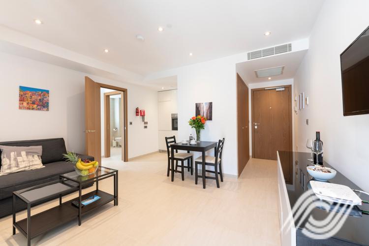 1 Bedroom Living Room (2)